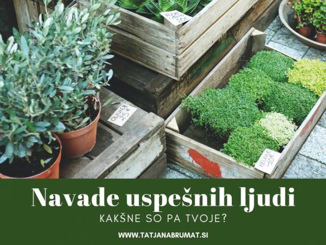 https://tatjanabrumat.si/wp-content/uploads/2019/01/Navade-uspešnih-ljudi-640x480.jpg