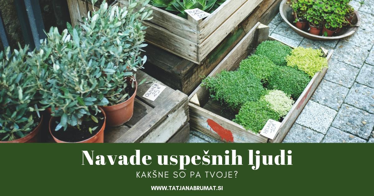 https://tatjanabrumat.si/wp-content/uploads/2019/01/Navade-uspešnih-ljudi.jpg